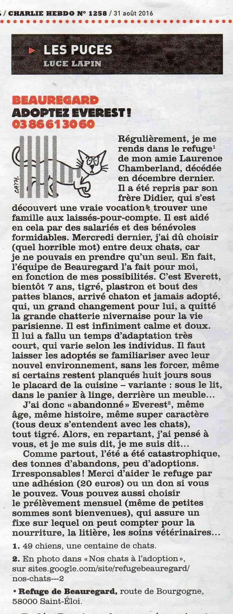 Luce Lapin de Charlie Hebdo  Downlo10