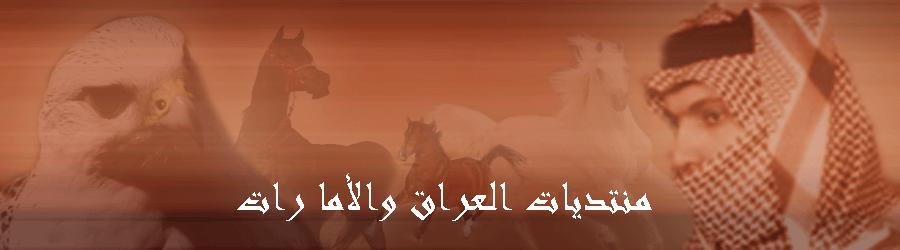 منتديات اهل العراق والامارات