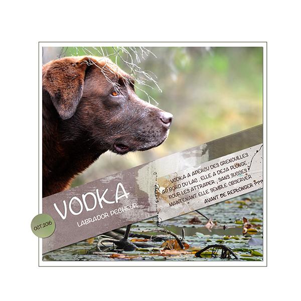 Challenge visiteurs 1ere quinzaine d'octobre 16 - Page 2 Vodka_10