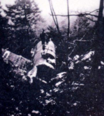 Stèle d'un Halifax dans le Vercors Autran13