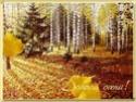 .. Осенние ОТКРЫТКИ 3f726a12