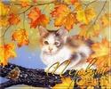 .. Осенние ОТКРЫТКИ 48094710