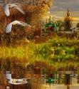 .. Осенние ОТКРЫТКИ 8ef36911