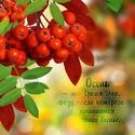 .. Осенние ОТКРЫТКИ Osen-410