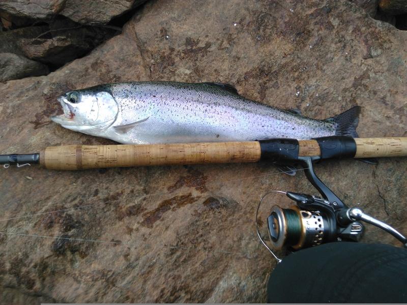 Votre pêche salmo de septembre  Img_2013