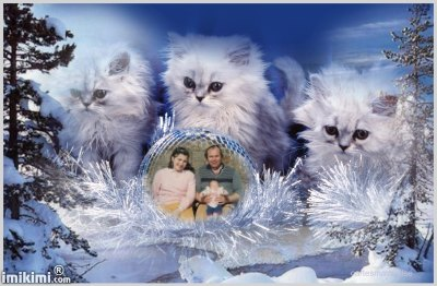 Montage de ma famille - Page 4 2zxda-99