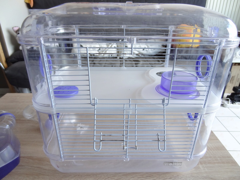 Vente : Cage hamster Rody 5 euros Dsc07811