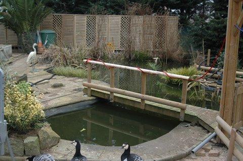 travailler un jardinet  à 0,50 mêtre du sol . Bassin10