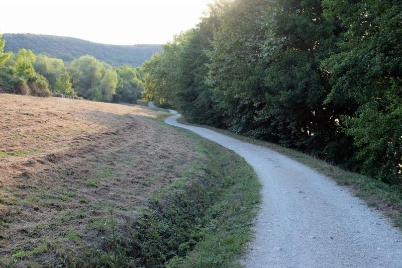 Le tour du Lac Du Causse - Lissac-sur-Couze (Brive) Dscf5867