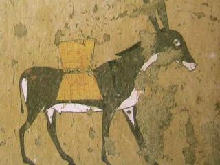 Jésus sur un âne Ane10