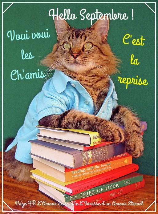 Bonjour, bonsoir..... - Page 22 7198510