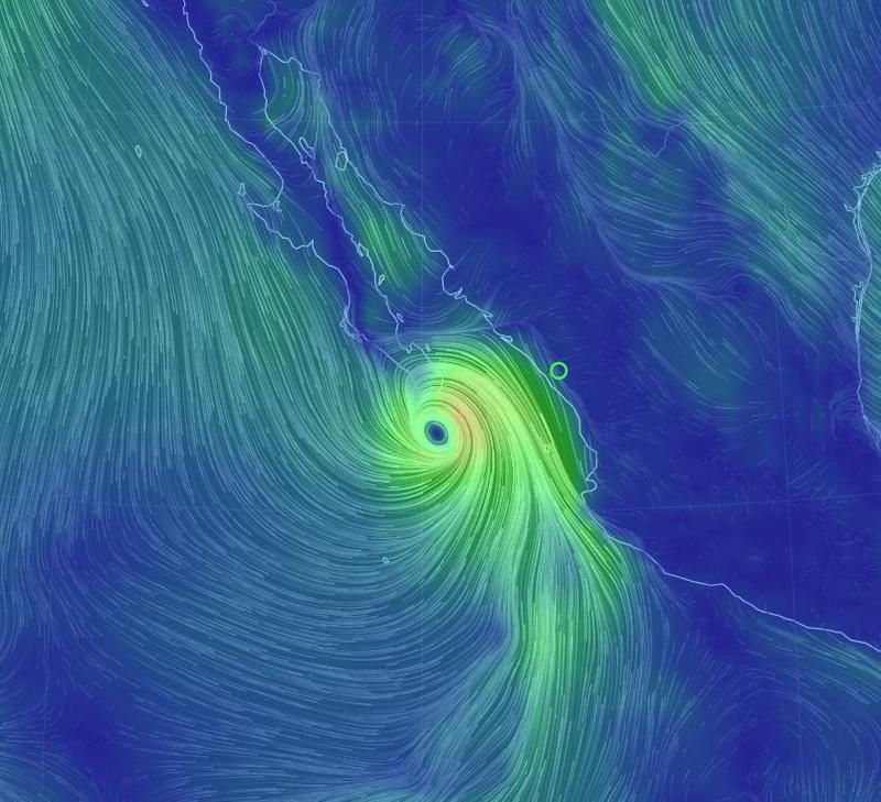 Hurricanes 2016 Newton10