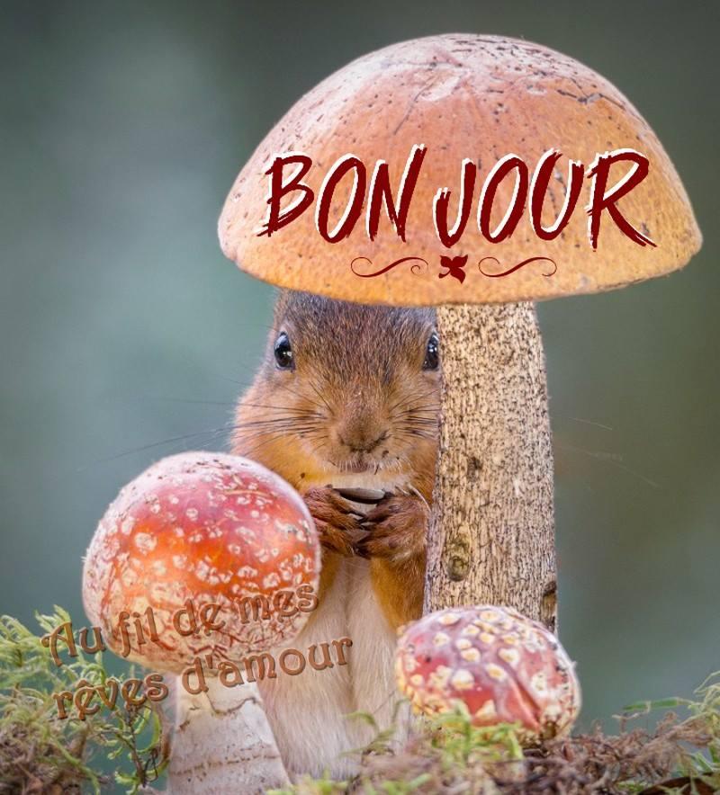 Mardi 20 septembre Bonjou19