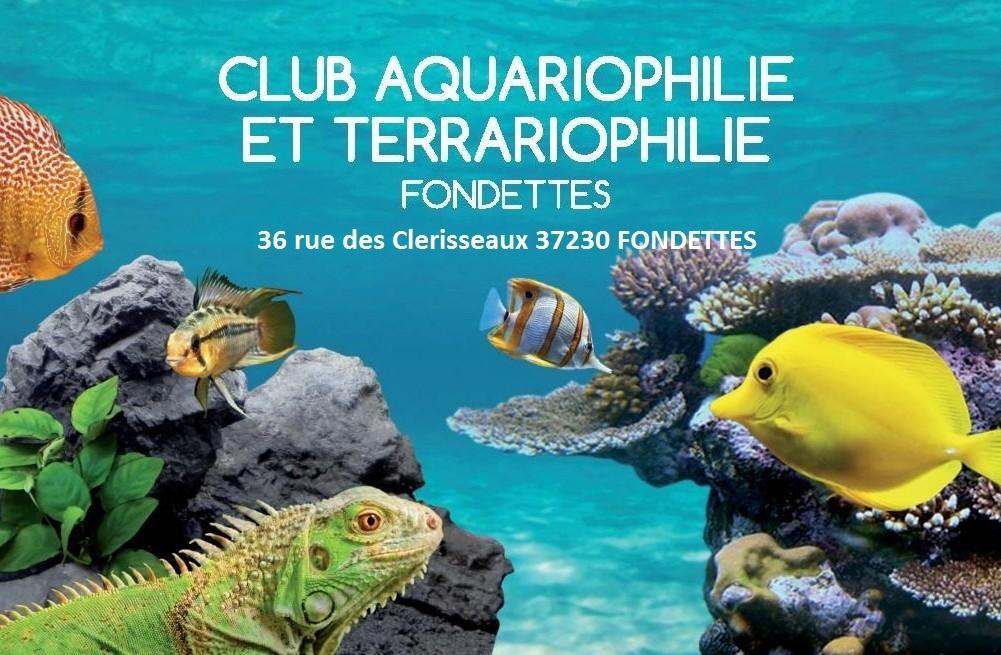36 rue des clerisseaux 37230 Fondettes