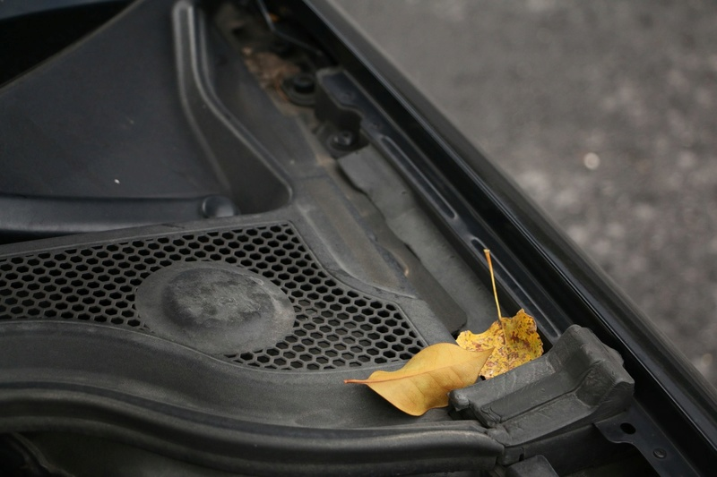 Audi S3 8p sb, una pulitina era d'obbligo Img_9877