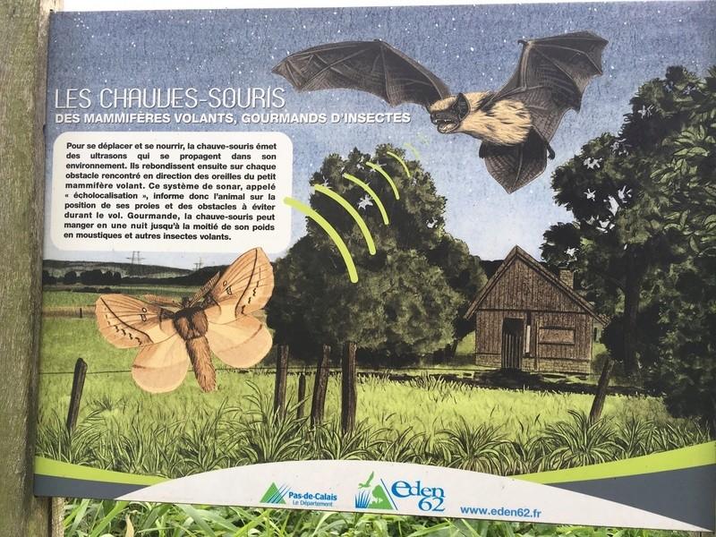 """el Parque Natural de Invernadeiro (provincia de Ourense) y """"los Cañones del Sil""""  escrito por nuestra amiga Paula Img_0210"""