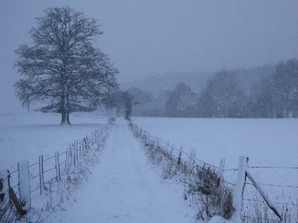 La neige est triste - Jean Richepin La_nei10
