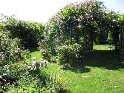 Le jardin d'antan - Emile Nelligan Le_jar10