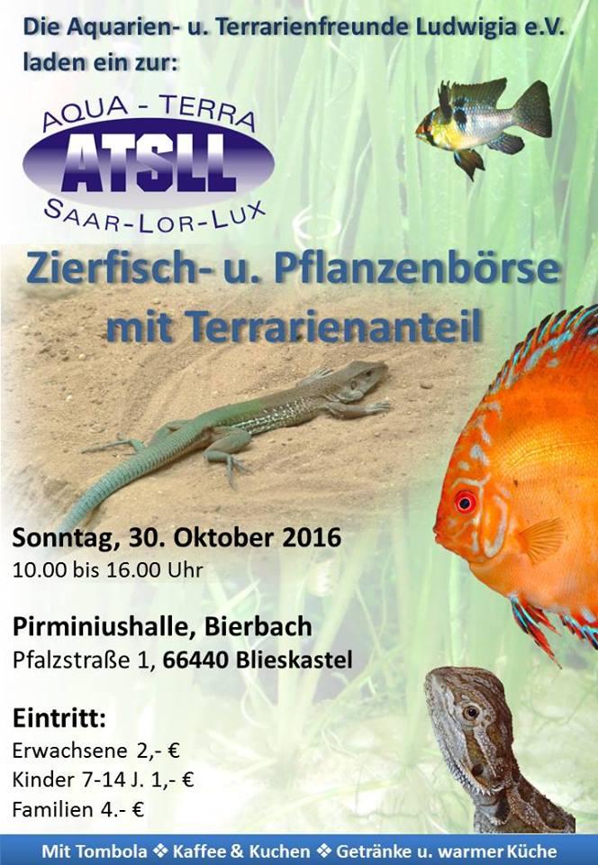 Bourse ATSLL -Blieskastel (DE) - 30 octobre 2016 Image10