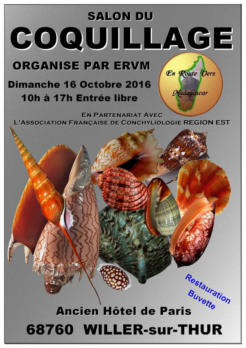 Exposition Coquillages de Madagascar Affich12