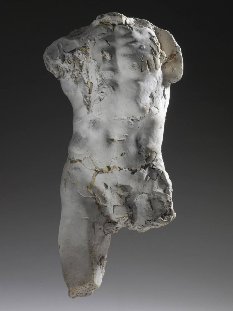 Le dialogue de Brancusi avec Rodin : quelques superbes plantes ont bel et bien poussé à l'ombre du grand arbre! 1878_e10