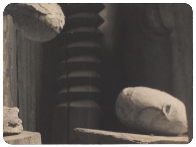 Le dialogue de Brancusi avec Rodin : quelques superbes plantes ont bel et bien poussé à l'ombre du grand arbre! 53955810