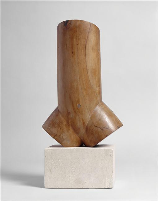 Le dialogue de Brancusi avec Rodin : quelques superbes plantes ont bel et bien poussé à l'ombre du grand arbre! Brancu18