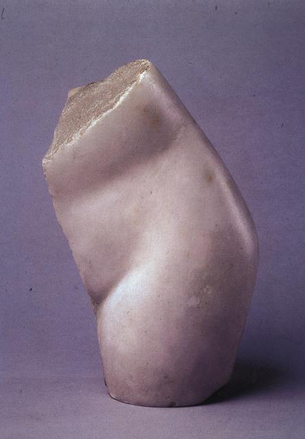 Le dialogue de Brancusi avec Rodin : quelques superbes plantes ont bel et bien poussé à l'ombre du grand arbre! Brancu19