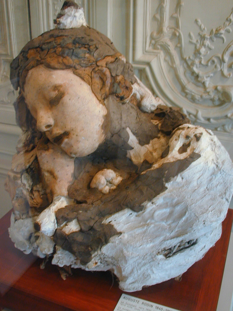 Le dialogue de Brancusi avec Rodin : quelques superbes plantes ont bel et bien poussé à l'ombre du grand arbre! Rodin_10