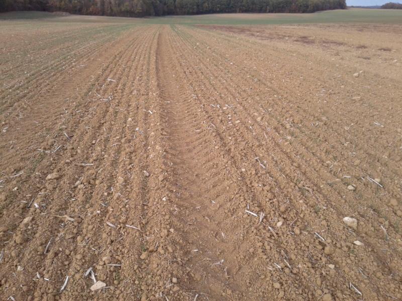 semis de cereales 2018-19 - Page 14 20181025