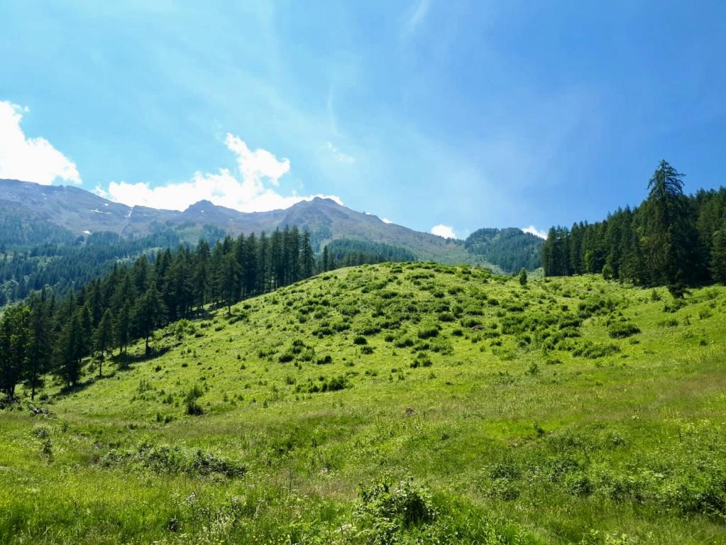 Giretto domenicale per la Val Susa 65b8eb10