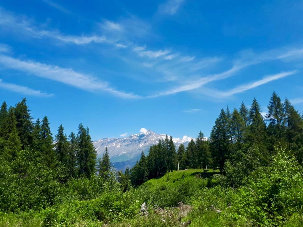 Giretto domenicale per la Val Susa E6430810