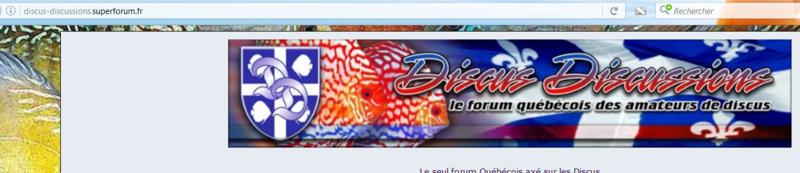 Comme si mon forum discus-discussion.com n'existerait plus Captur62