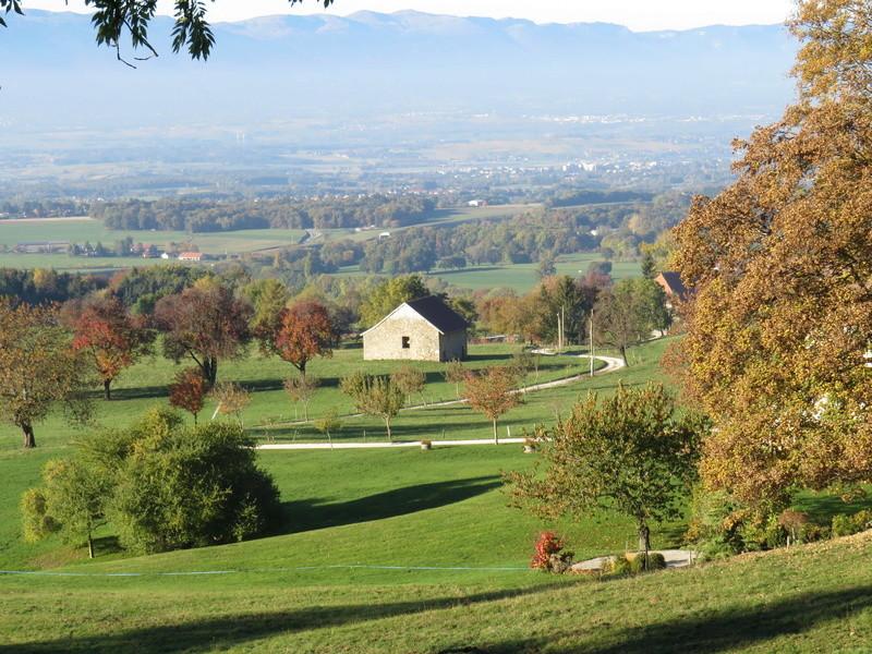 Balades canines: Pays de Gex/Jura/Genève ou Albertville (73) - Page 5 Img_2727
