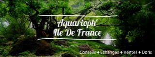 Aquarioph'Ile de France Aquari10