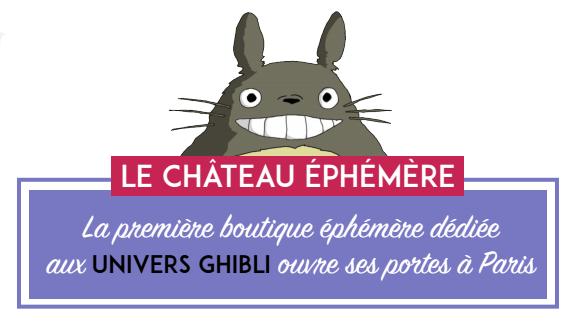 Le Château éphémère Chatea10