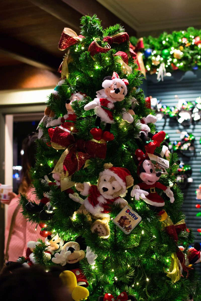 Once upon a christmas time: WDW, DCL, et Universal vu par 2 lyonnais du 01 au 20 novembre 2015 [TERMINÉ: 17/04/17] - Page 12 Dsc_7922