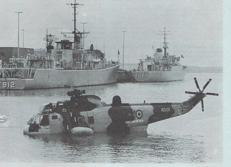 Sea King - Page 3 Hylico10