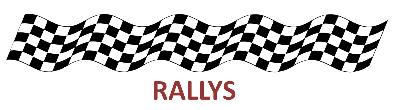 CAMPEONATO DE RALLY Y RALLY-CROSS 2016 Rallys10