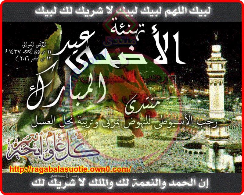تهنئة بقدوم عيد الأضحى المبارك (1437هـ : 2016 م ) 111