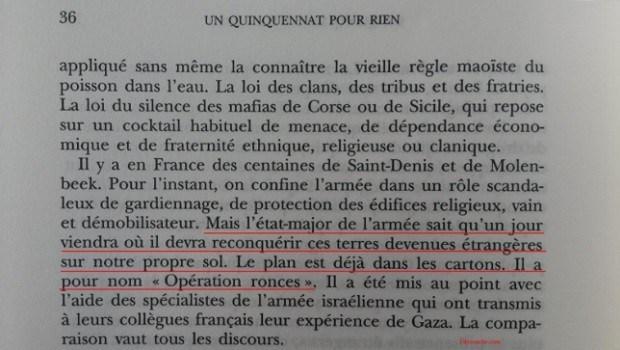 Preuves de la conspiration judéo-maçonnique mondialiste concernant l'immigration-invasion incontrôlable pour détruire la France et l'Europe. Eric_z10