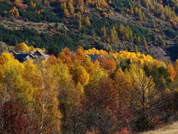 novembre dans les Hautes-Alpes (05) - Page 2 Automn11