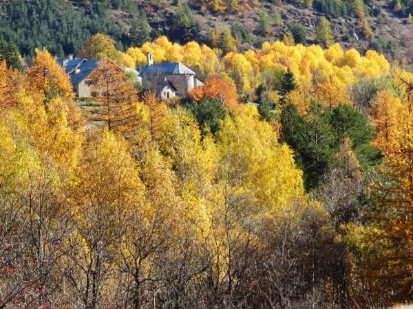 novembre dans les Hautes-Alpes (05) - Page 2 Automn12