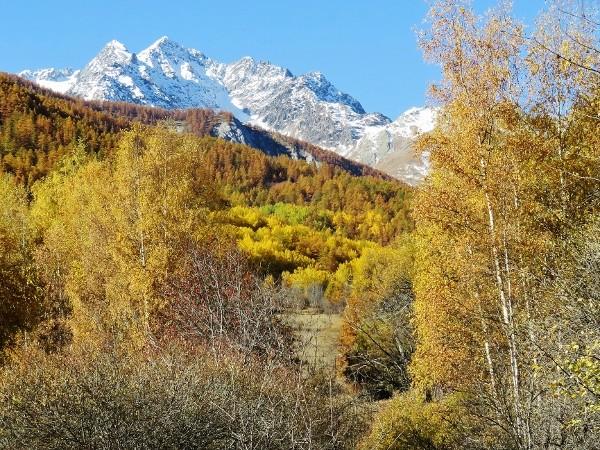novembre dans les Hautes-Alpes (05) - Page 2 Automn24