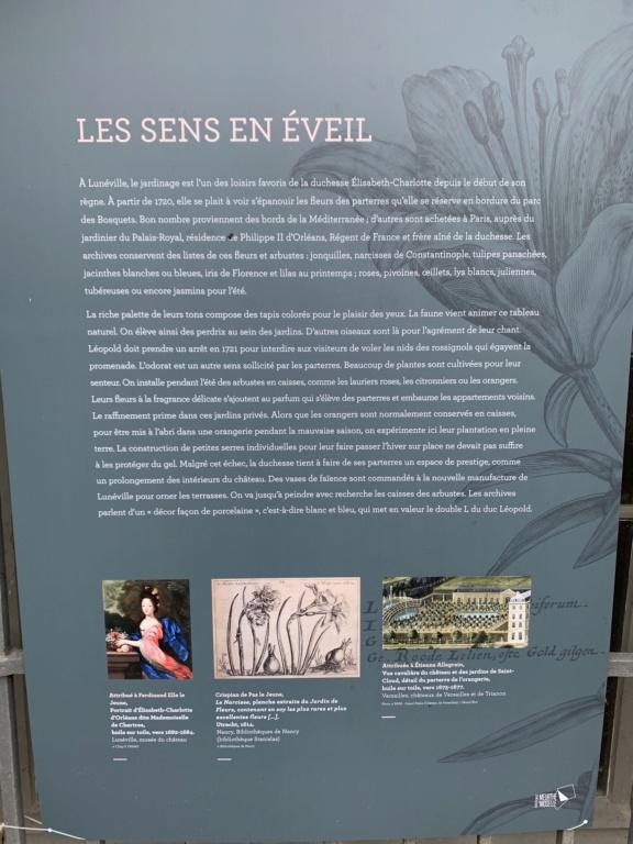 Restitution du jardin privé d'Elisabeth-Charlotte d'Orléans à Lunéville 366f0510