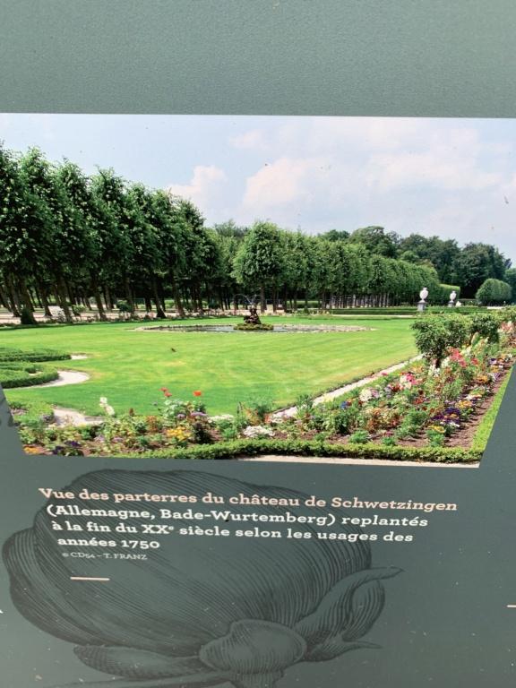 Restitution du jardin privé d'Elisabeth-Charlotte d'Orléans à Lunéville 93a36210