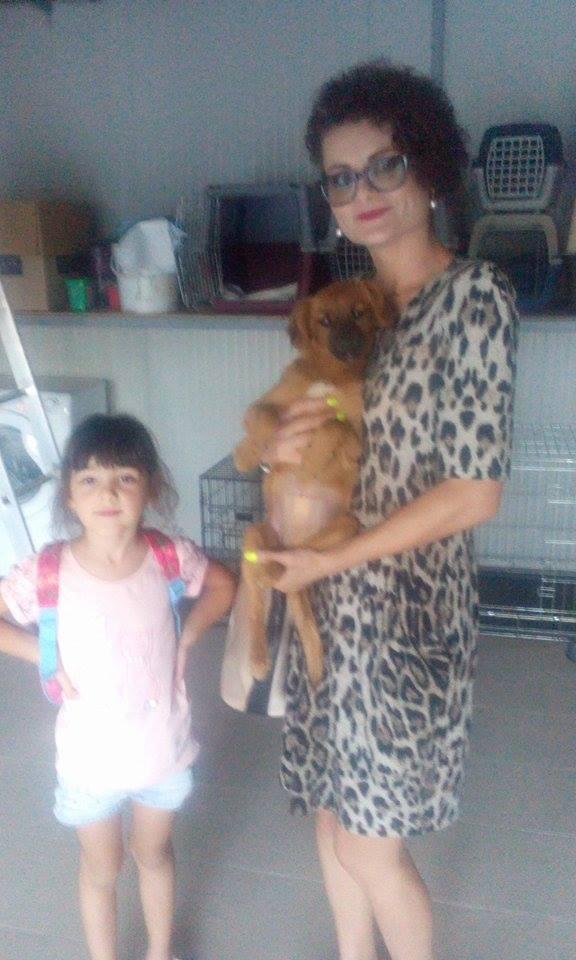 PRALINE- chiot femelle- née en mai 2016 - adoptée en Roumanie 14330911