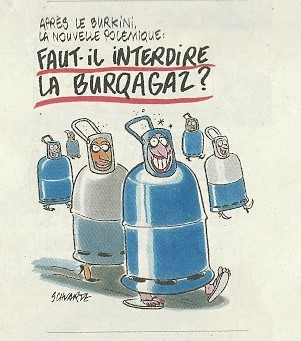 Images insolites ! - Page 4 Burqag10