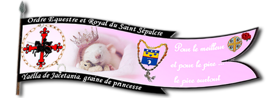 Mariage de Giulietta. et Zepto Nouvel10