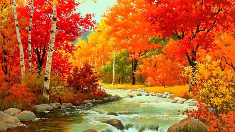 L'eau paisible des ruisseaux et petites rivières  - Page 5 Autumn11